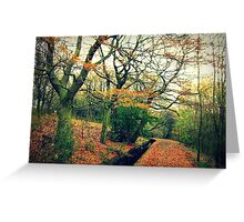 Autumn Colours... Greeting Card
