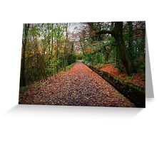 Colourful Nature Greeting Card