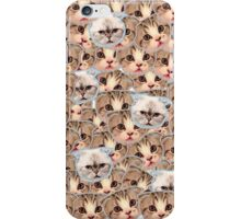 Taylor Swift Cats iPhone Case/Skin