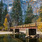 Swinging Bridge by Anne  McGinn