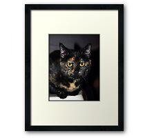 Sweet Little Elsie Framed Print