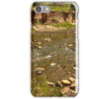Summer Stream iPhone Case/Skin