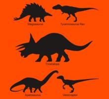 Childrens Dinosaur Clothing Kids Clothes