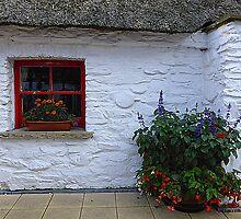Traditional Irish Cottage by Fara