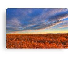 Prairie Swept Canvas Print