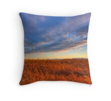 Prairie Swept Throw Pillow
