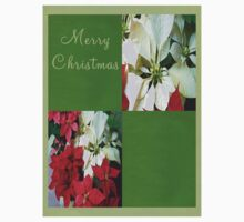 Mixed color Poinsettias 1 Merry Christmas Q5F1 Kids Clothes