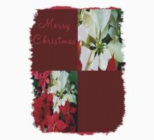 Mixed color Poinsettias 1 Merry Christmas Q10F1 Kids Clothes