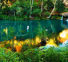Fern Pool, Karijini National Park by Ken Watt Photography
