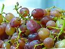 Grapes by Susan S. Kline