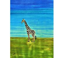 Giraffe. Perfect for the kids Photographic Print
