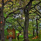 Fairies Lost  by Linda Miller Gesualdo