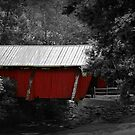 The Old Covered Bridge by Darlene Lankford Honeycutt