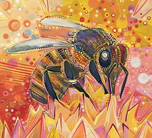 Western honey bee by Gwenn Seemel