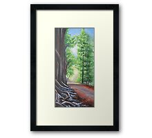 Faraway Framed Print