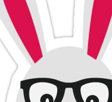 Rabbit with glasses Sticker
