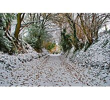 From Autumn to Winter. Photographic Print