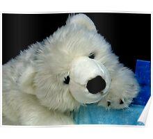 I So Want This Beautiful Bear......... Poster