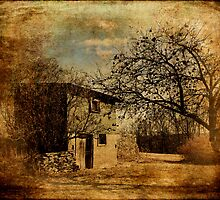 Orchard and Barn by PineSinger