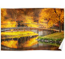Fall over Storrow Lagoon Poster