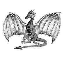 Dwaine the Dragon Photographic Print