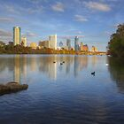 Austin Images - The Austin Skyline on a Autumn Day from Zilker Park 1 by RobGreebonPhoto