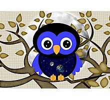 Owls September Photographic Print