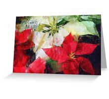 Mixed Color Poinsettias 2 Sketchy Greeting Card