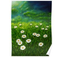 Daisy meadow Poster