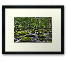Deep Green River Framed Print