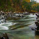 Cossatot River by Chris Ferrell