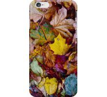 Autumn. iPhone Case/Skin