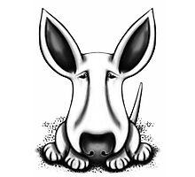 EBT Big Ear Dog  Photographic Print
