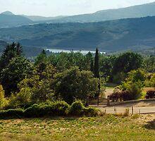 Arezzo, Tuscany (near Castelnuovo) #003 by Samuel Webster