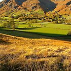 The Langdales From Below Side Pike by Mike  Waldron