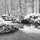 snow in the smoky mountains by dc witmer