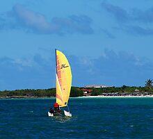 Catamaran On Cuba Coastline by cherylorraine