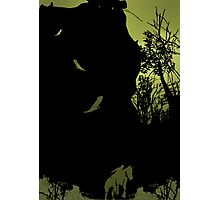 shadow of the colossus_2 Photographic Print