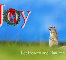 Joy... Let Heaven and Nature sing by Owed to Nature