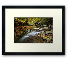 Autumn is coming 2 Framed Print