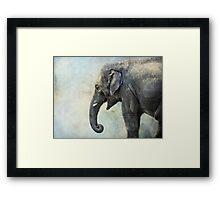 Elephant for Ali Framed Print