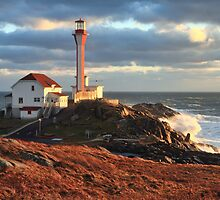 The Lighthouse at Cape Forchu in a Storm by Debbie  Roberts