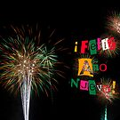 Feliz Ano Nuevo 2014 Colorful Fireworks Card Invitation by Marianne Campolongo
