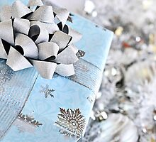 Christmas gift box by Elena Elisseeva