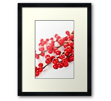 Red Christmas berries Framed Print