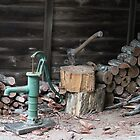 Woodpile in August by aussiebushstick