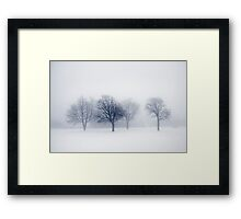 Winter trees in fog Framed Print