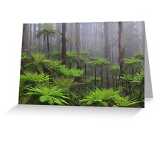 Ferns in the mist The Black Spur  Greeting Card