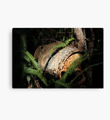 The Old Milk-can Mail-box Canvas Print