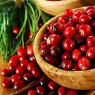 Cranberries in bowls by Elena Elisseeva